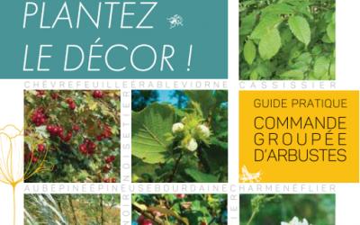 Commande groupée d'arbustes : L'opération «Plantons le décor !» fête déjà ses 10 ans !